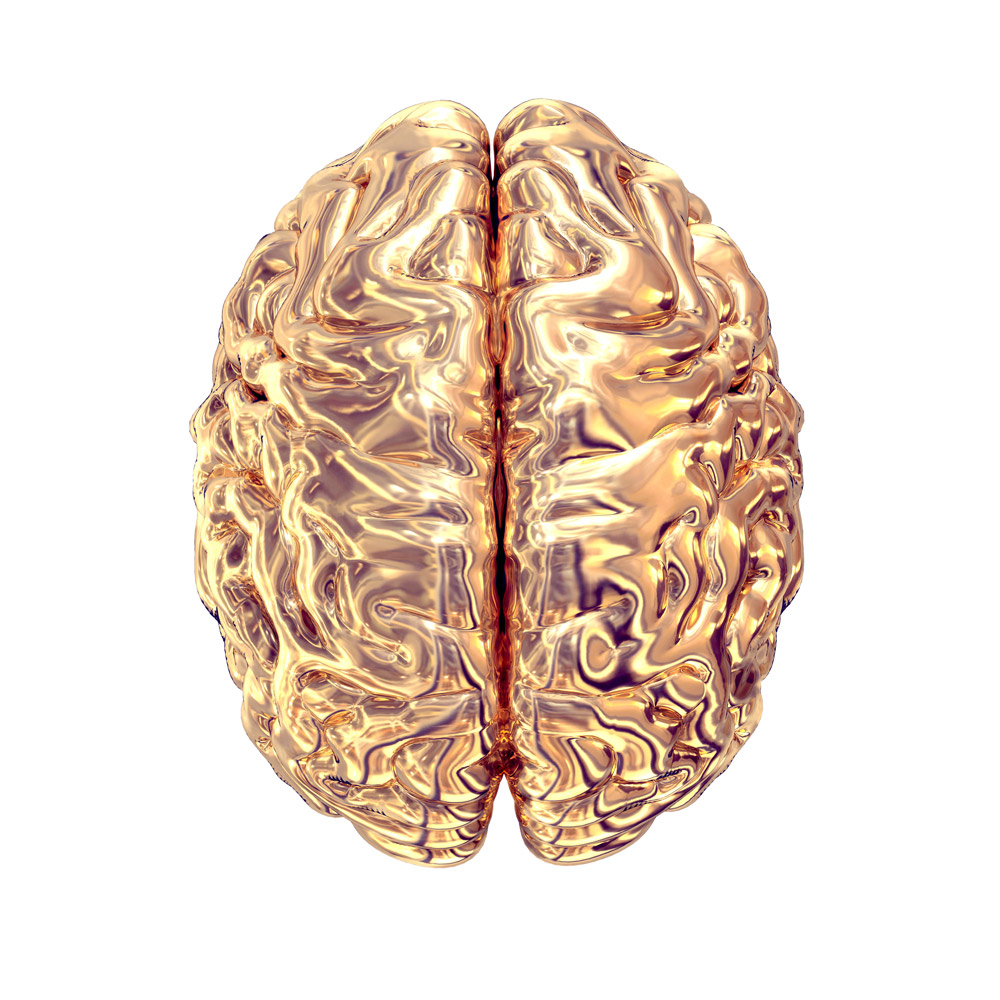 Limbic-Neuromarketing